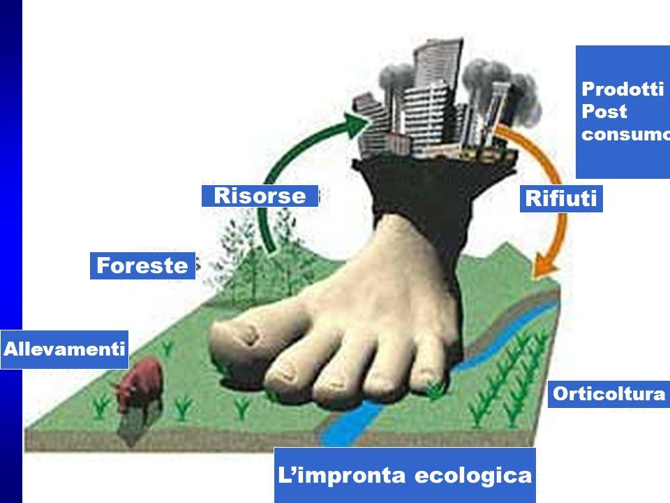 Limpronta ecologica Risorse Rifiuti Foreste Allevamenti Orticoltura Prodotti Post consumo