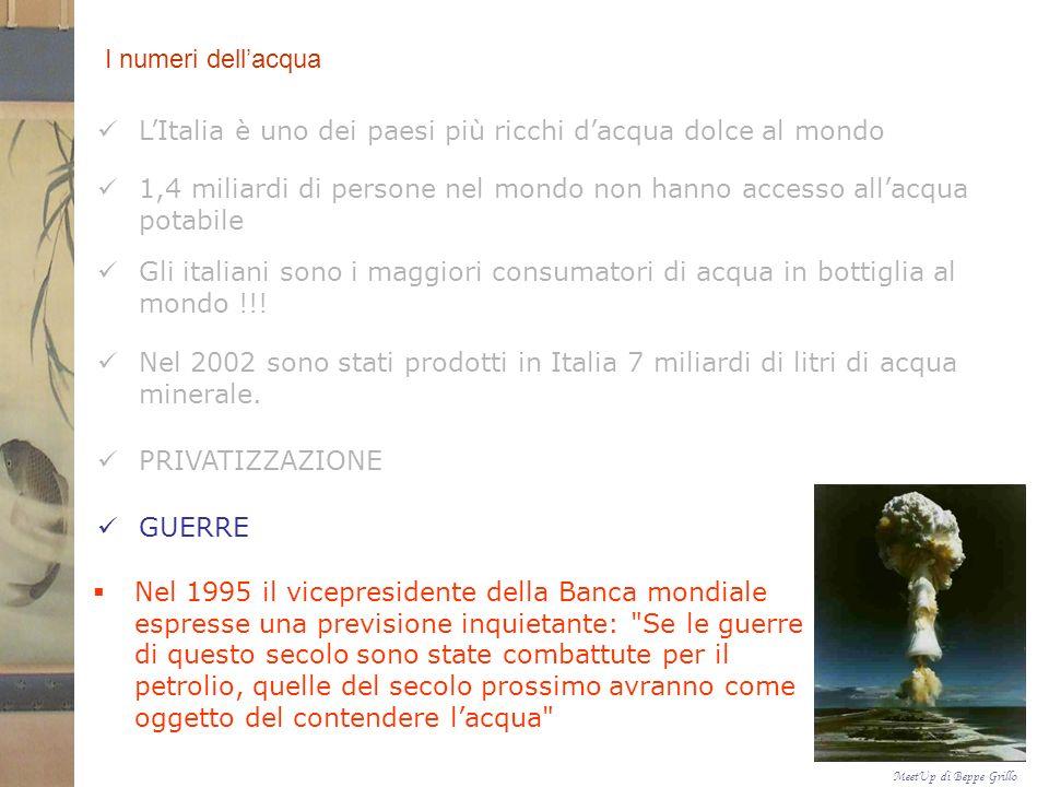 MeetUp di Beppe Grillo CONCLUSIONI