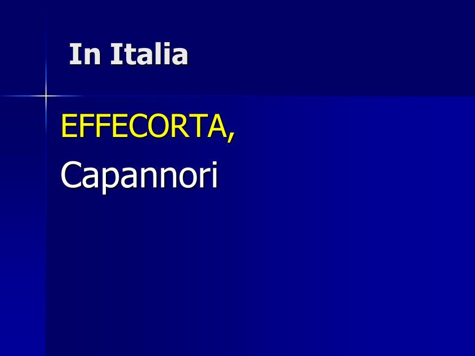 In Italia In Italia EFFECORTA,Capannori