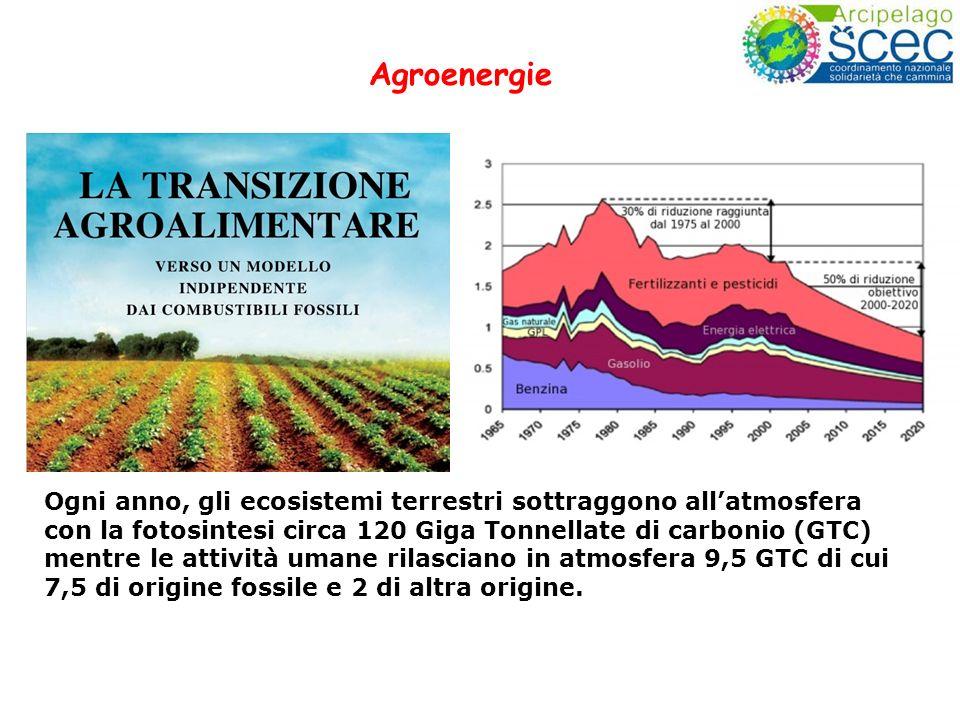 Ogni anno, gli ecosistemi terrestri sottraggono allatmosfera con la fotosintesi circa 120 Giga Tonnellate di carbonio (GTC) mentre le attività umane r