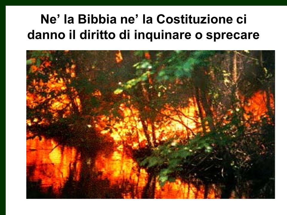 Ne la Bibbia ne la Costituzione ci danno il diritto di inquinare o sprecare