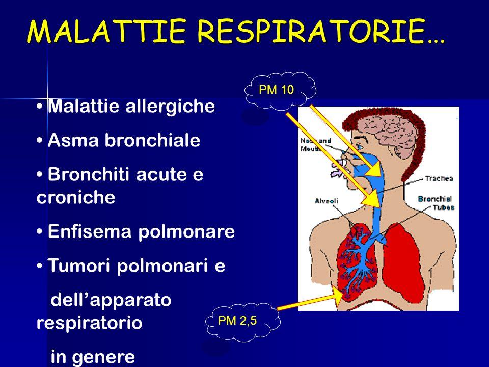 MALATTIE RESPIRATORIE… Malattie allergiche Asma bronchiale Bronchiti acute e croniche Enfisema polmonare Tumori polmonari e dellapparato respiratorio in genere PM 10 PM 2,5