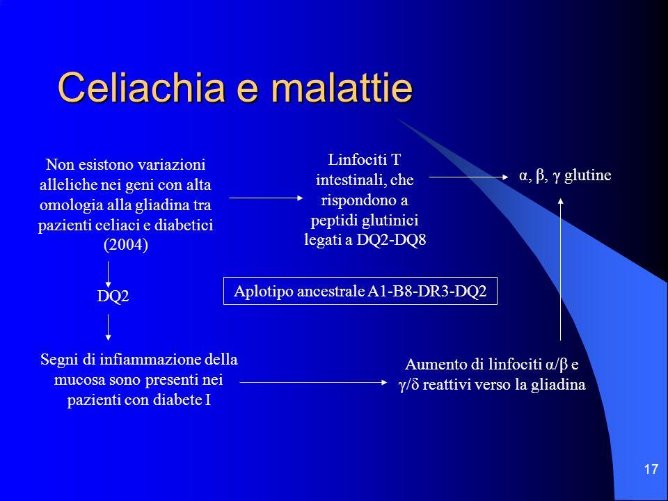 17 Celiachia e malattie Non esistono variazioni alleliche nei geni con alta omologia alla gliadina tra pazienti celiaci e diabetici (2004) DQ2 Linfoci