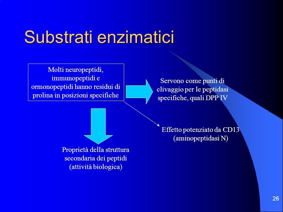 26 Substrati enzimatici Molti neuropeptidi, immunopeptidi e ormonopeptidi hanno residui di prolina in posizioni specifiche Proprietà della struttura s