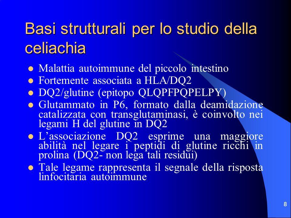 8 Basi strutturali per lo studio della celiachia Malattia autoimmune del piccolo intestino Fortemente associata a HLA/DQ2 DQ2/glutine (epitopo QLQPFPQ