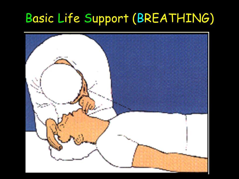Basic Life Support (BREATHING)