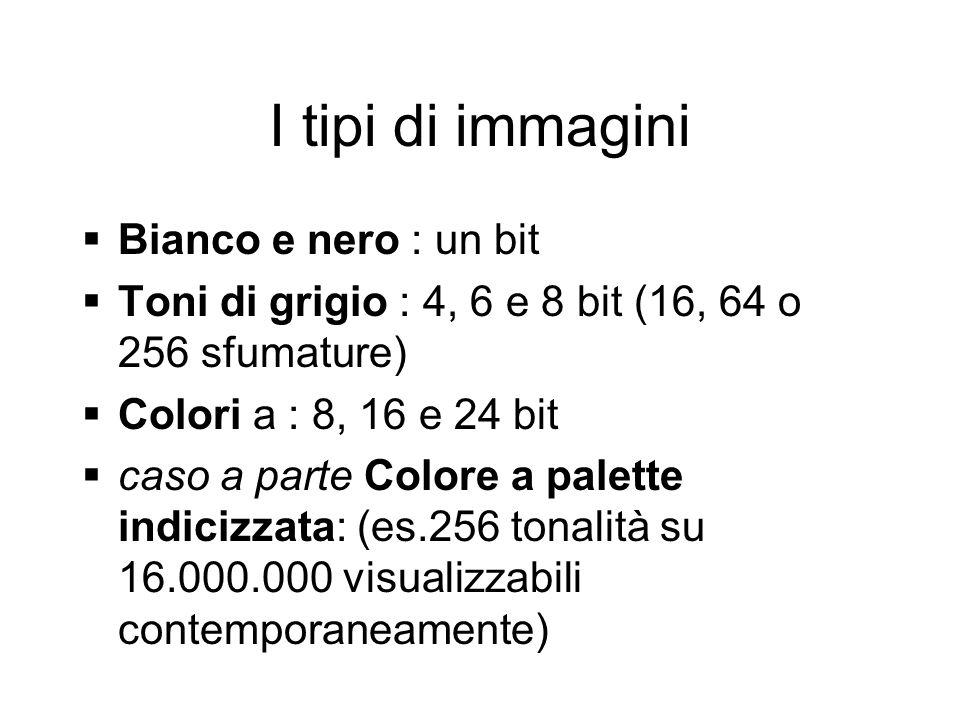 I tipi di immagini Bianco e nero : un bit Toni di grigio : 4, 6 e 8 bit (16, 64 o 256 sfumature) Colori a : 8, 16 e 24 bit caso a parte Colore a palette indicizzata: (es.256 tonalità su 16.000.000 visualizzabili contemporaneamente)
