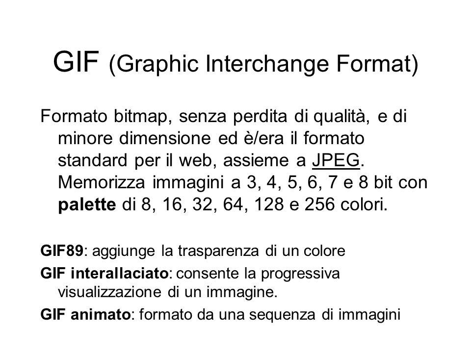 GIF (Graphic Interchange Format) Formato bitmap, senza perdita di qualità, e di minore dimensione ed è/era il formato standard per il web, assieme a JPEG.