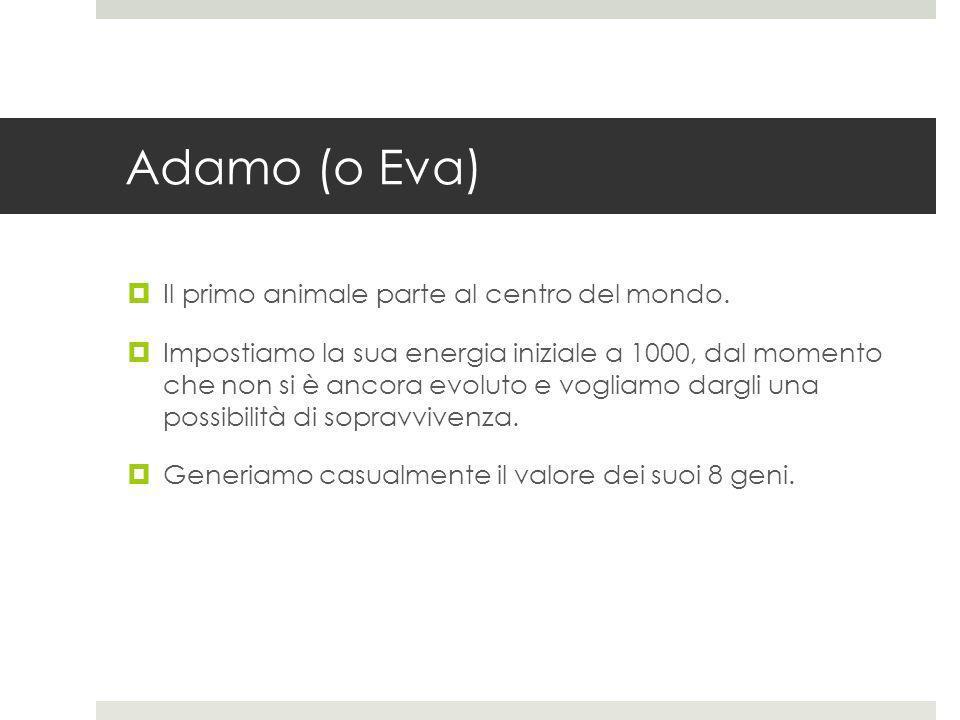 Adamo (o Eva) Il primo animale parte al centro del mondo. Impostiamo la sua energia iniziale a 1000, dal momento che non si è ancora evoluto e vogliam