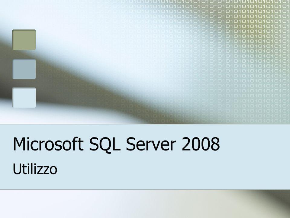 Microsoft SQL Server 2008 Utilizzo
