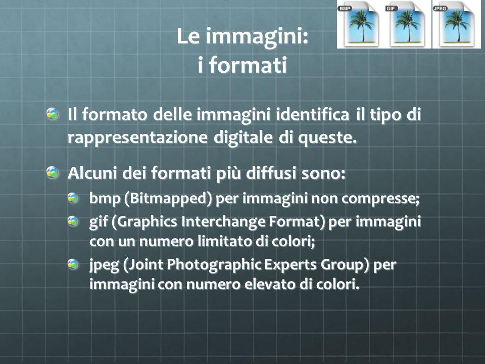 Le immagini: i formati Il formato delle immagini identifica il tipo di rappresentazione digitale di queste. Alcuni dei formati più diffusi sono: bmp (