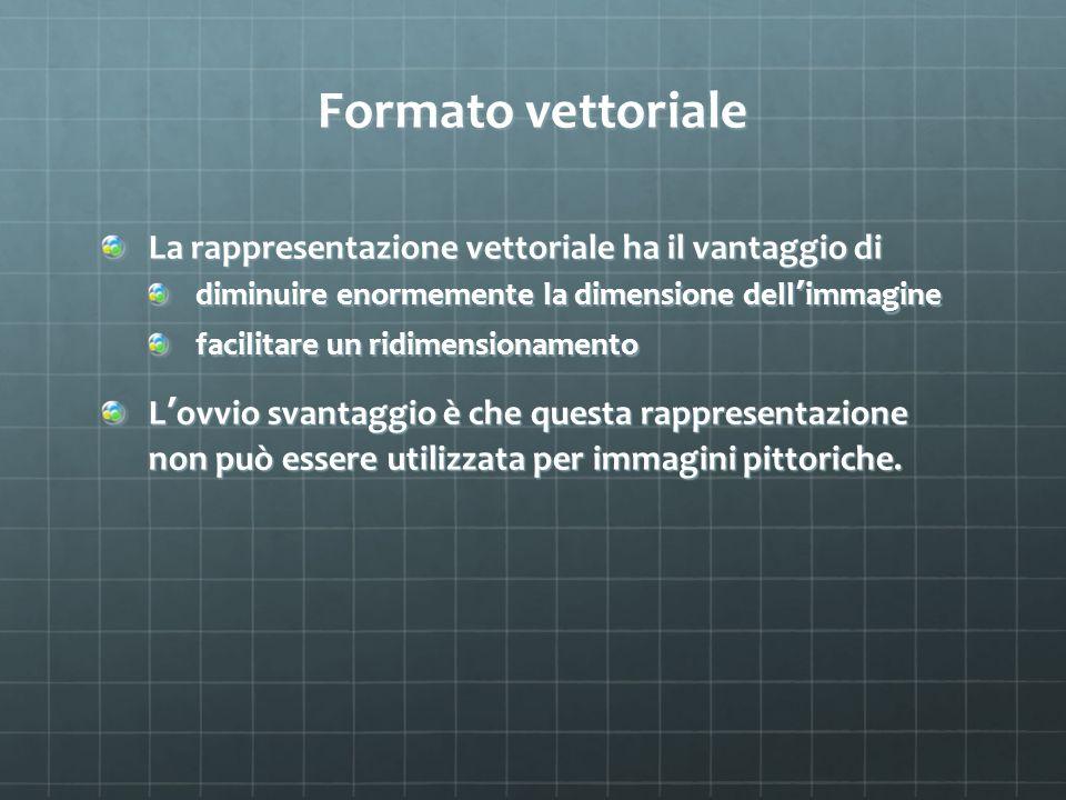 Formato vettoriale La rappresentazione vettoriale ha il vantaggio di diminuire enormemente la dimensione dell immagine facilitare un ridimensionamento