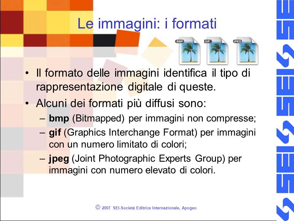 © 2007 SEI-Società Editrice Internazionale, Apogeo Le immagini: i formati Il formato delle immagini identifica il tipo di rappresentazione digitale di