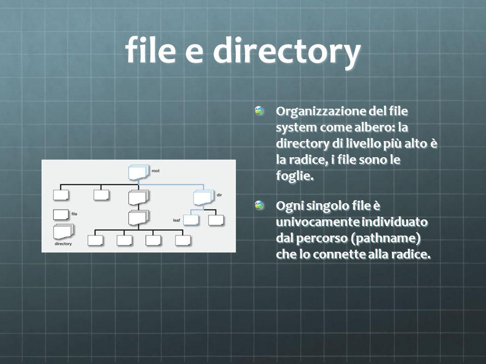 file e directory Organizzazione del file system come albero: la directory di livello più alto è la radice, i file sono le foglie. Ogni singolo file è