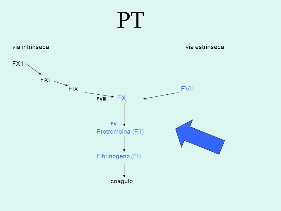 Tempo di protrombina PT Temposecondi Attività% Rapporto INR