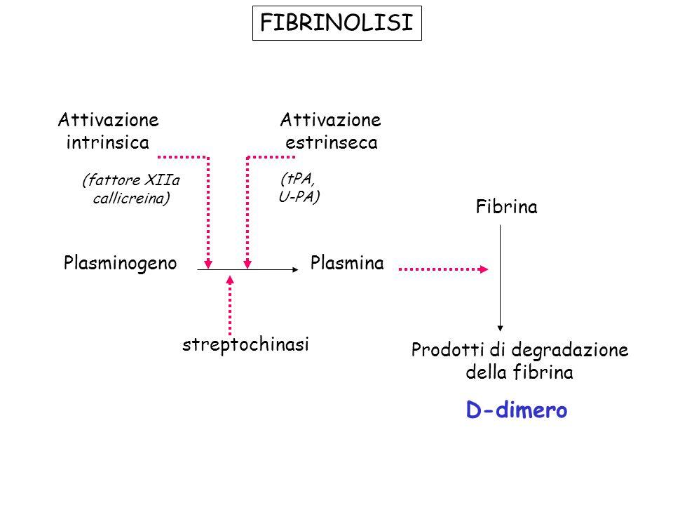 FIBRINOLISI PlasminogenoPlasmina Fibrina Prodotti di degradazione della fibrina streptochinasi Attivazione intrinsica Attivazione estrinseca (fattore