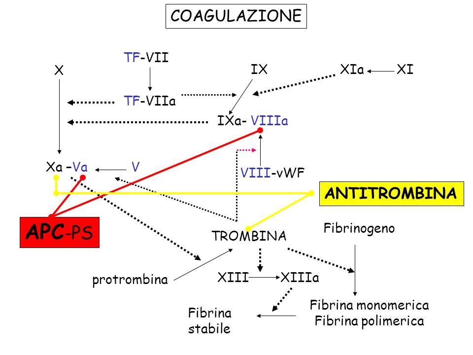 COAGULAZIONE TF-VII TF-VIIa X Xa –VaV IXXIaXI IXa- VIIIa VIII-vWF TROMBINA protrombina Fibrinogeno Fibrina monomerica Fibrina polimerica Fibrina stabi