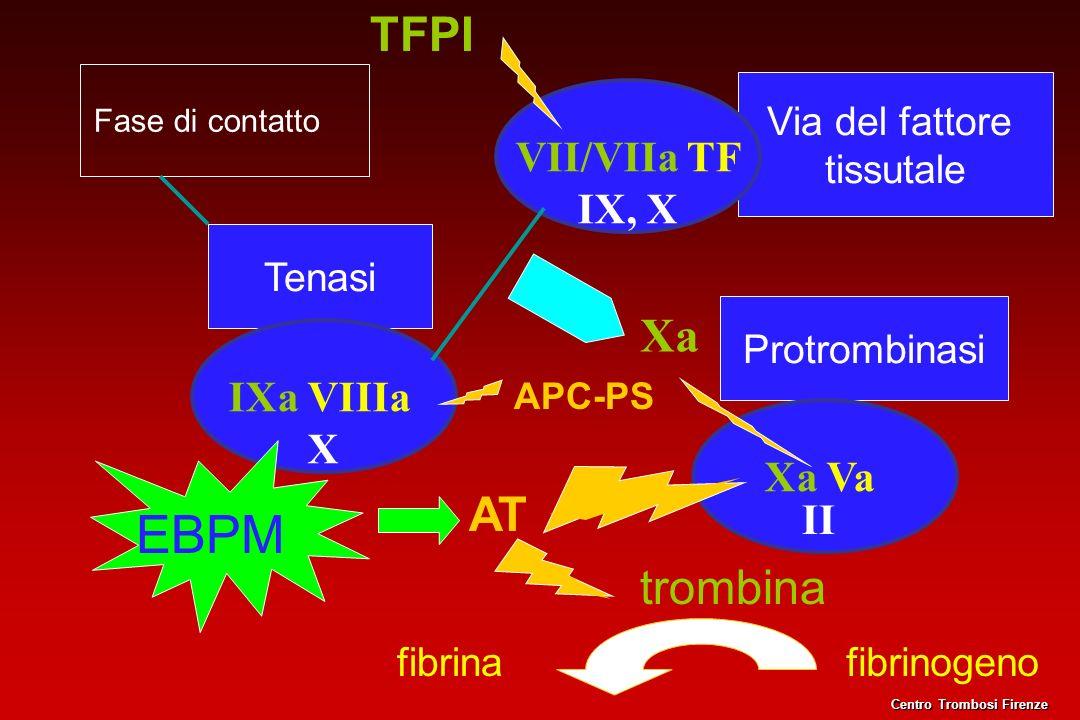 Via del fattore tissutale Fase di contatto Tenasi IXa VIIIa X VII/VIIa TF IX, X Xa Protrombinasi Xa Va fibrinogenofibrina trombina TFPI APC-PS AT II E