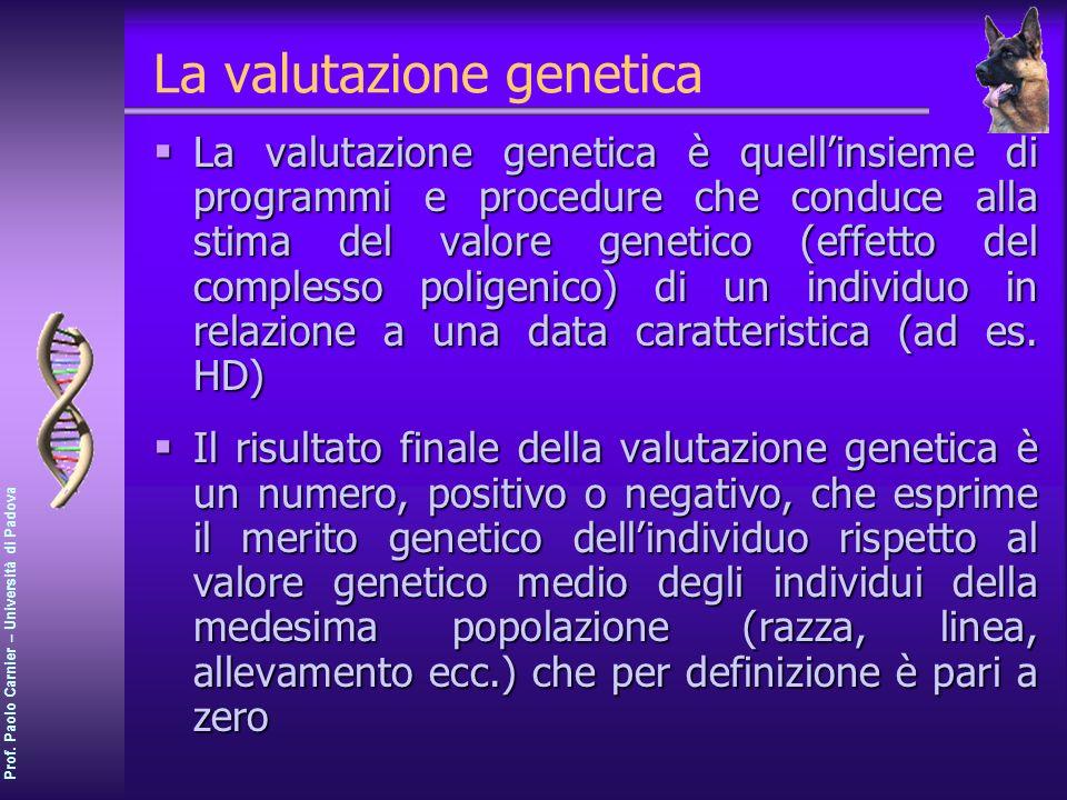 Prof. Paolo Carnier – Università di Padova La valutazione genetica La valutazione genetica è quellinsieme di programmi e procedure che conduce alla st