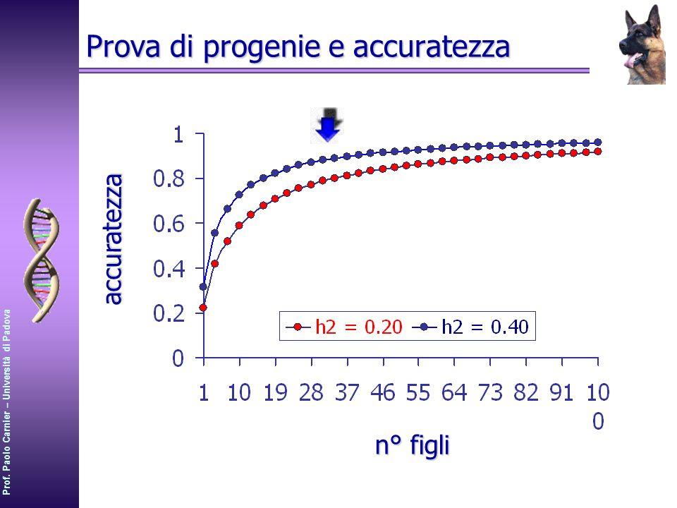 Prof. Paolo Carnier – Università di Padova Prova di progenie e accuratezza accuratezza n° figli