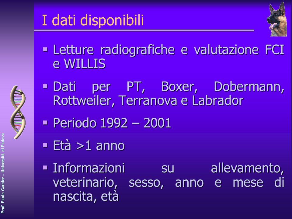 Prof. Paolo Carnier – Università di Padova I dati disponibili Letture radiografiche e valutazione FCI e WILLIS Letture radiografiche e valutazione FCI
