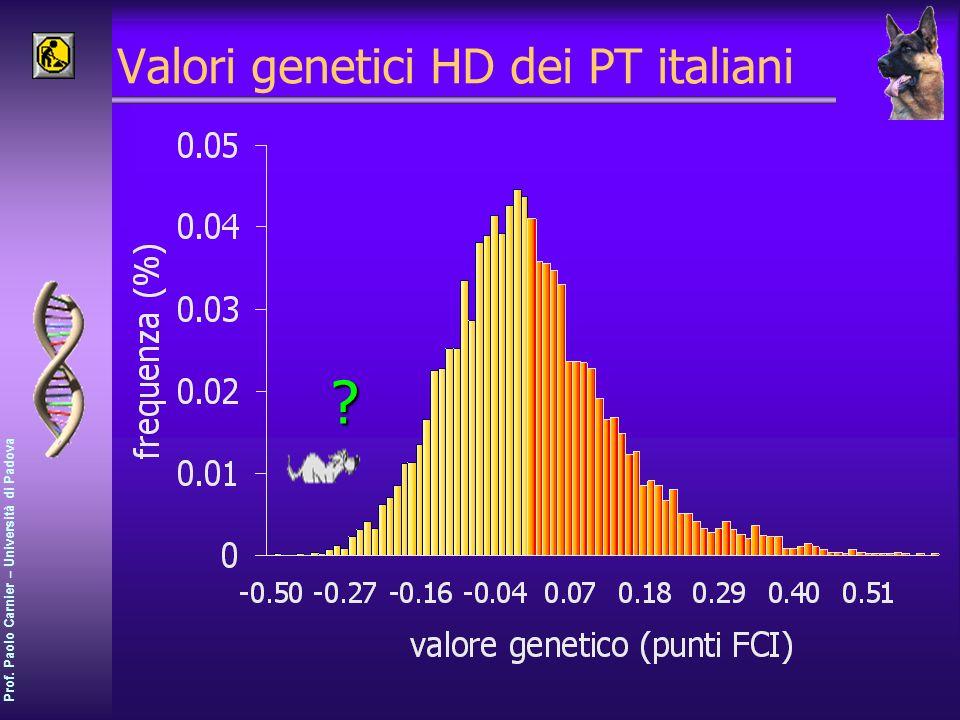 Prof. Paolo Carnier – Università di Padova Valori genetici HD dei PT italiani?