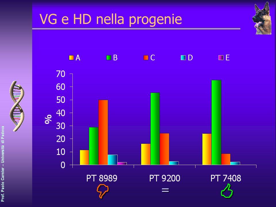 Prof. Paolo Carnier – Università di Padova VG e HD nella progenie =