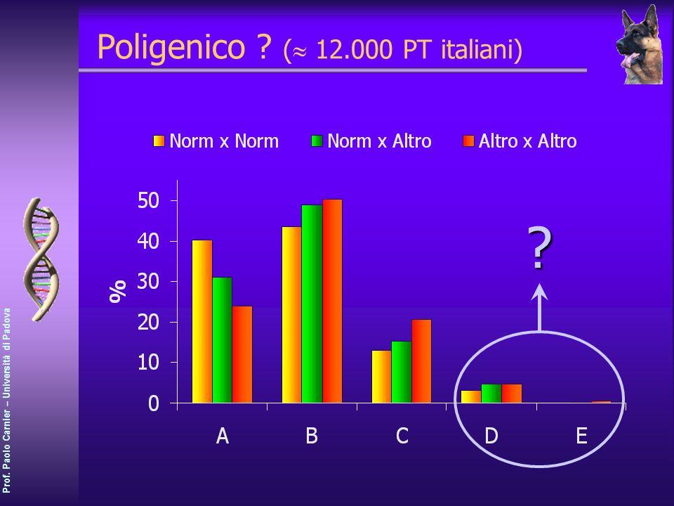 Prof. Paolo Carnier – Università di Padova Poligenico ? ( 12.000 PT italiani)?