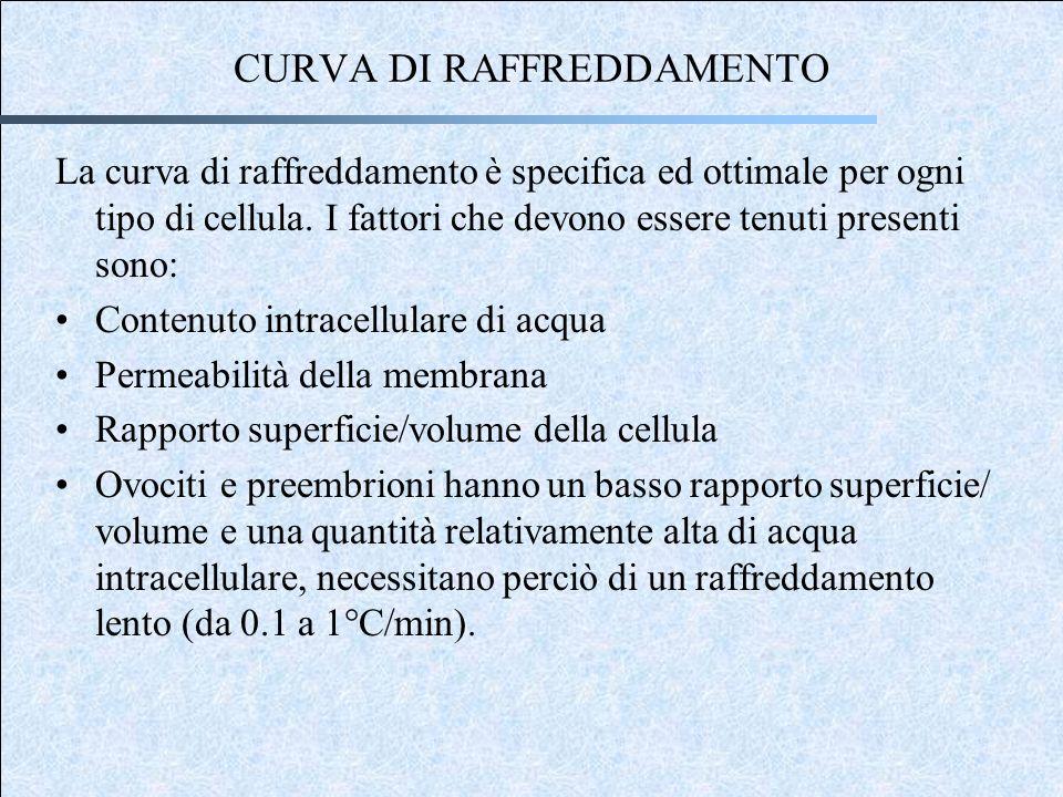 CURVA DI RAFFREDDAMENTO La curva di raffreddamento è specifica ed ottimale per ogni tipo di cellula.