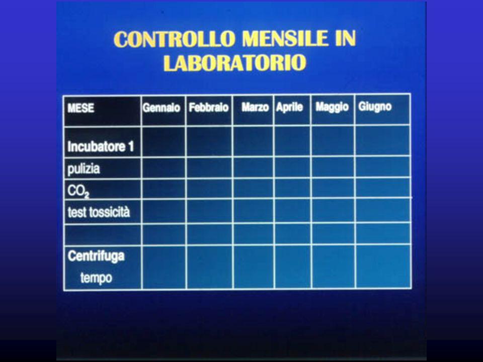 Procedure documentazione delle procedure svolte (manuale di laboratorio)documentazione delle procedure svolte (manuale di laboratorio) documentazione delleffettiva applicazione delle proceduredocumentazione delleffettiva applicazione delle procedure