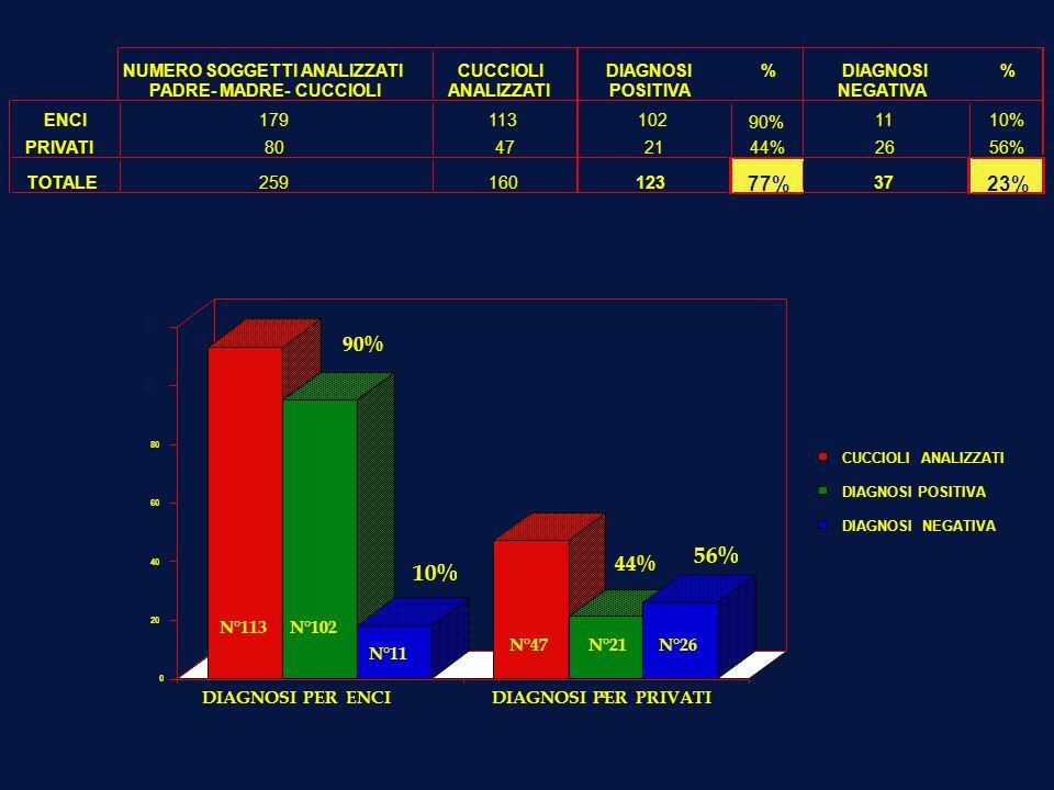 NUMERO SOGGETTI ANALIZZATICUCCIOLIDIAGNOSI% % PADRE- MADRE- CUCCIOLIANALIZZATIPOSITIVA NEGATIVA ENCI179113102 90% 1110% PRIVATI80472144%2656% TOTALE25