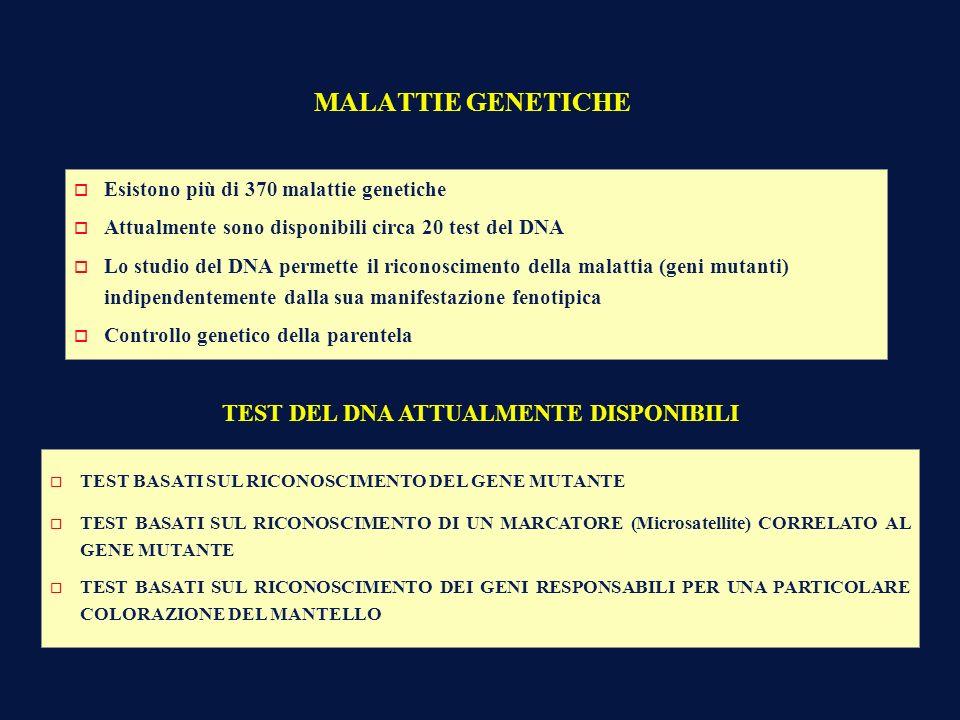 MALATTIE GENETICHE o Esistono più di 370 malattie genetiche o Attualmente sono disponibili circa 20 test del DNA o Lo studio del DNA permette il ricon