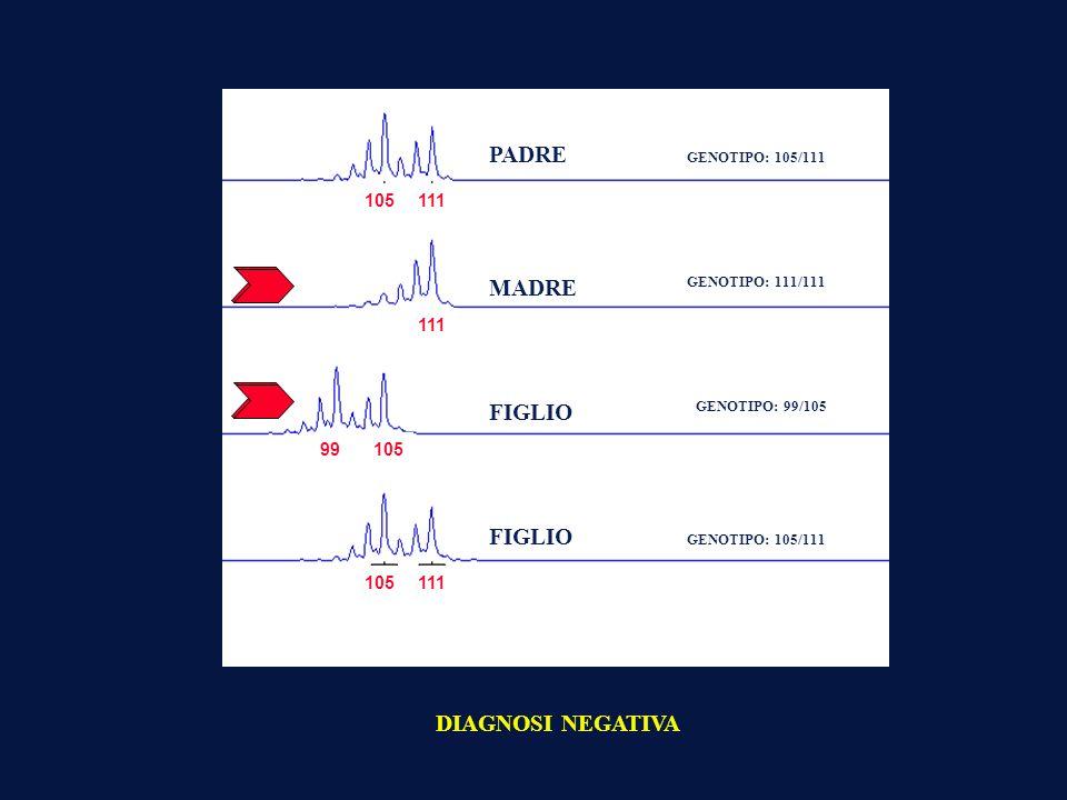 STRATEGIE DI STUDIO: MALATTIE MONOGENETICHEMALATTIE POLIGENETICHE MAPPAGGIO DEL GENOMA NEL CANE MAPPE FISICHE MAPPE GENETICHE (linkage) MAPPE COMPARATIVE TECNICHE PRINCIPALI: PCR (Polimerase Chain Reaction) SEQUENZIAMENTO codice genetico: es: aattcgattttaggccca ANALISI DI LINKAGE Identificazione di marcatori che segregano con i geni di interesse responsabili per la malattia genetica in studio Marcatore Geni GENOMA RICERCA DEL GENE CANDIDATO: Individuare i possibili geni candidati responsabili della malattia Studi Fisiologici e biologici Studi di patologie similari in altre specie Individuare il polimorfismo del gene candidato e controllo sul pedigree