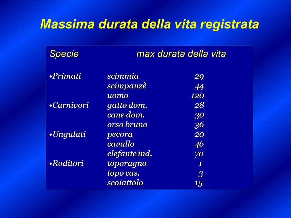 La pluripatologia Soggetti di età > 65 anni che dichiarano di essere affetti da più di una malattia cronica ISTAT, 2000