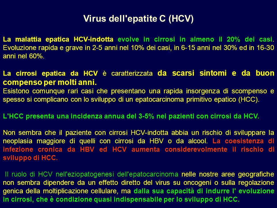 PRECEDENTE PRECEDENTE HOME U.O.S.E. HOME U.O.S.E. Virus dell'epatite C (HCV) La malattia epatica HCV-indotta evolve in cirrosi in almeno il 20% dei ca