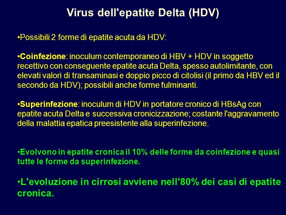 Virus dell'epatite Delta (HDV) Possibili 2 forme di epatite acuta da HDV: Coinfezione: inoculum contemporaneo di HBV + HDV in soggetto recettivo con c
