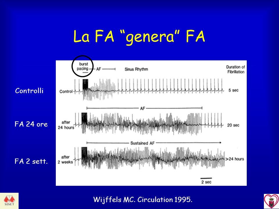 La FA genera FA Wijffels MC. Circulation 1995. Controlli FA 24 ore FA 2 sett.