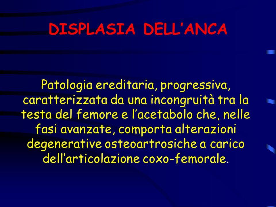 CLASSIFICAZIONE CHD E quella della FEDERAZIONE CINOLOGICA INTERNAZIONALE (FCI) e comprende 5 gradi: A- Anca normale B- Anca quasi normale C- Leggera displasia dellanca (ancora ammesso) D- Media displasia dellanca E- Grave displasia dellanca