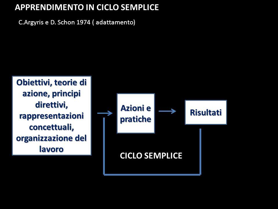 Obiettivi, teorie di azione, principi direttivi, rappresentazioni concettuali, organizzazione del lavoro Azioni e pratiche Risultati CICLO SEMPLICE C.