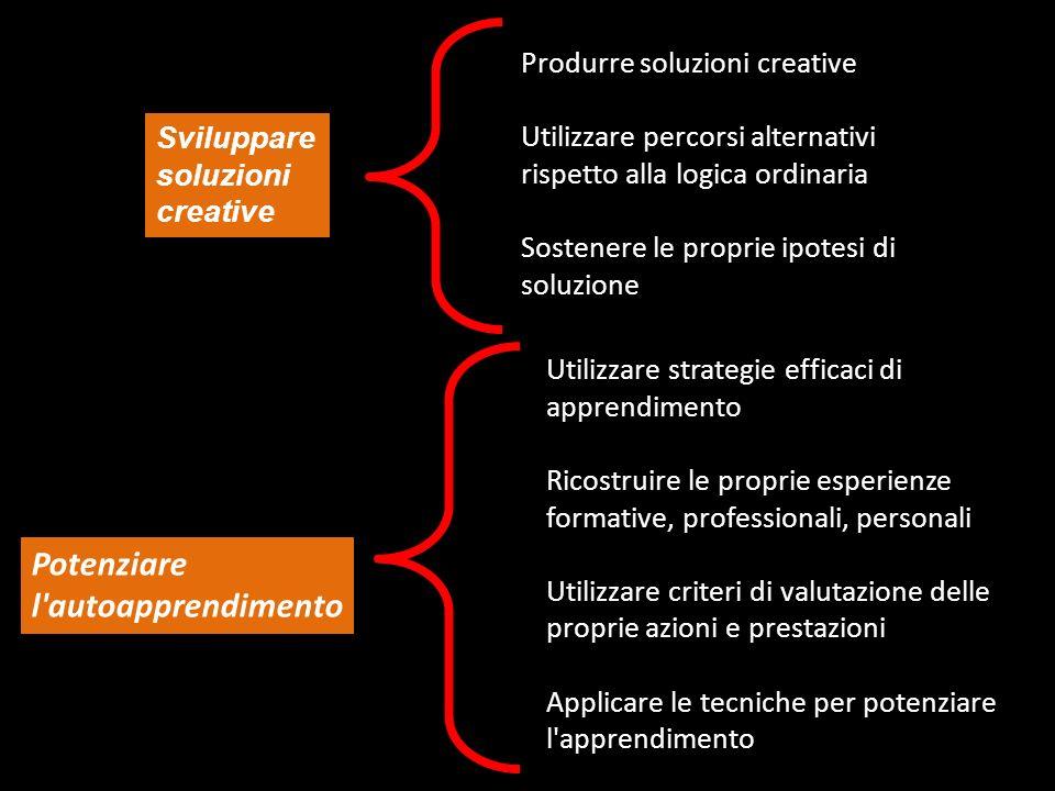 Sviluppare soluzioni creative Produrre soluzioni creative Utilizzare percorsi alternativi rispetto alla logica ordinaria Sostenere le proprie ipotesi