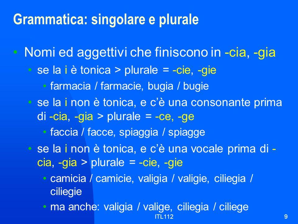 ITL1129 Grammatica: singolare e plurale Nomi ed aggettivi che finiscono in -cia, -gia se la i è tonica > plurale = -cie, -gie farmacia / farmacie, bug