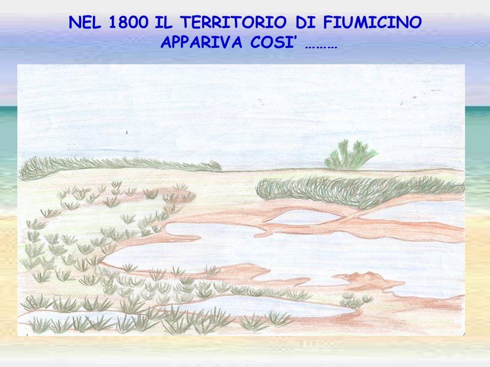 NEL 1800 IL TERRITORIO DI FIUMICINO APPARIVA COSI ………