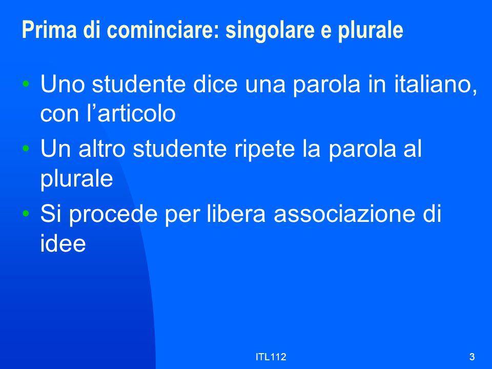 ITL1123 Prima di cominciare: singolare e plurale Uno studente dice una parola in italiano, con larticolo Un altro studente ripete la parola al plurale Si procede per libera associazione di idee