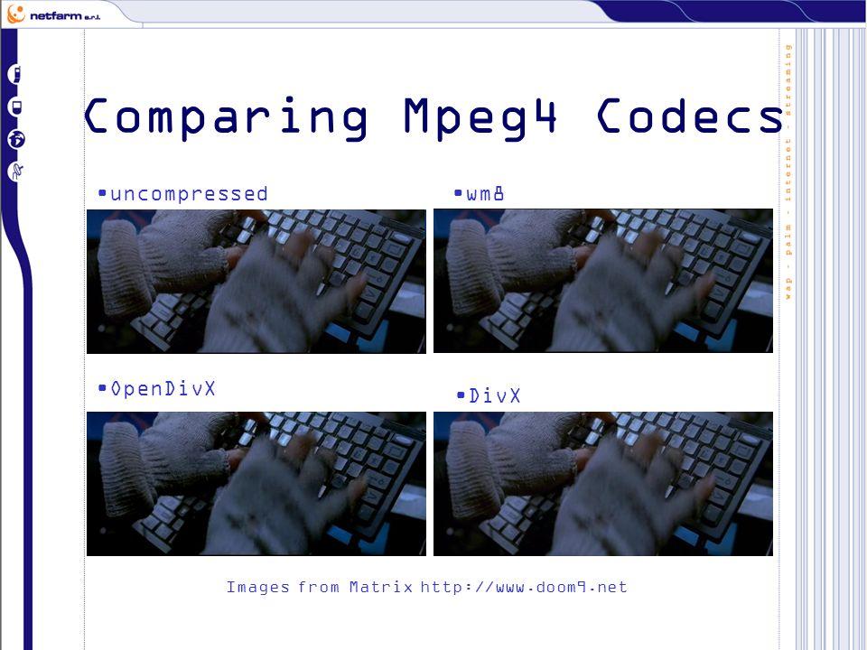 Comparing Mpeg4 Codecs uncompressedwm8 OpenDivX DivX Images from Matrix http://www.doom9.net