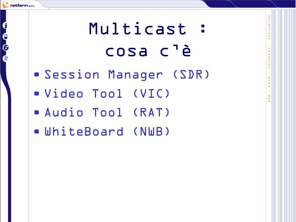 Multicast : cosa si sta facendo Reingegnerizzazione dei software esistenti per implemetare i codec di nuova generazione e i nuovi sistemi hardware.