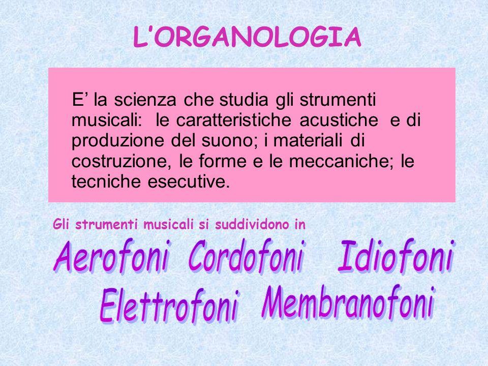 E la scienza che studia gli strumenti musicali: le caratteristiche acustiche e di produzione del suono; i materiali di costruzione, le forme e le meccaniche; le tecniche esecutive.