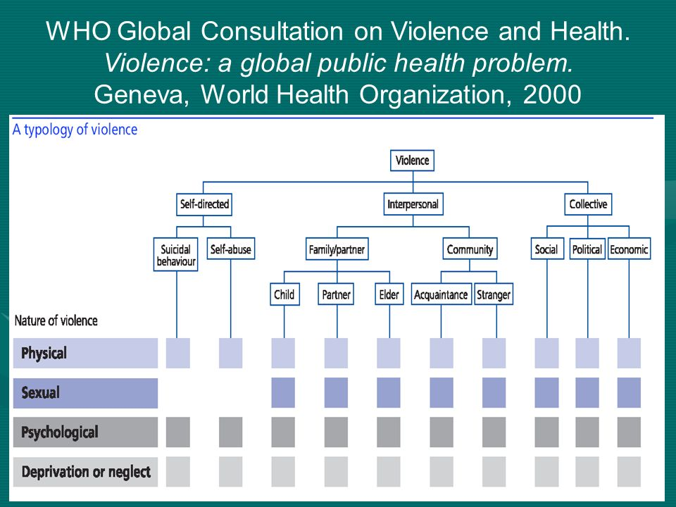 WHO Global Consultation on Violence and Health.Violence: a global public health problem.