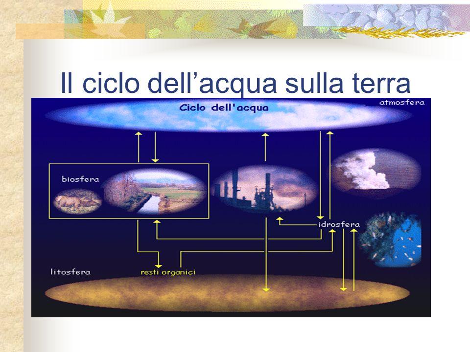Il ciclo dellacqua sulla terra