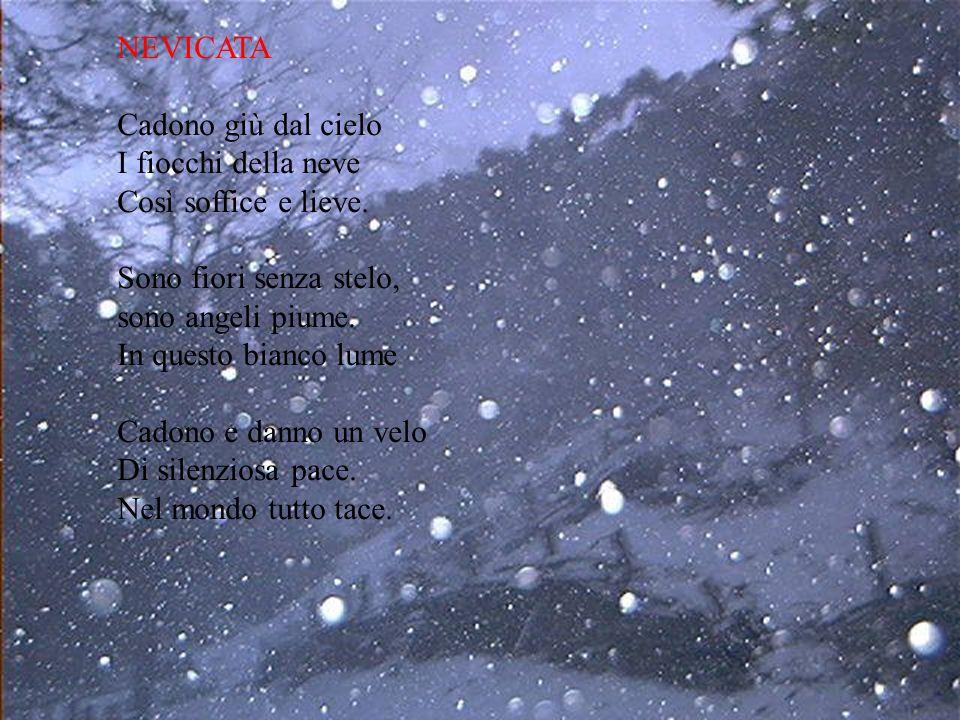 NEVICATA Cadono giù dal cielo I fiocchi della neve Così soffice e lieve. Sono fiori senza stelo, sono angeli piume. In questo bianco lume Cadono e dan