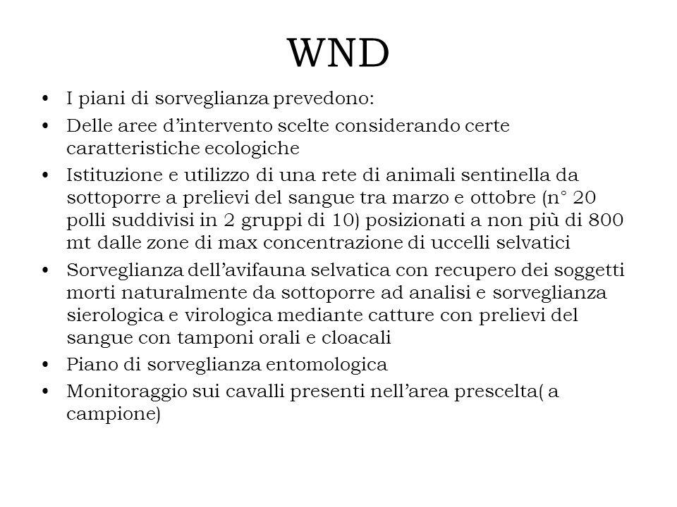 WND I piani di sorveglianza prevedono: Delle aree dintervento scelte considerando certe caratteristiche ecologiche Istituzione e utilizzo di una rete